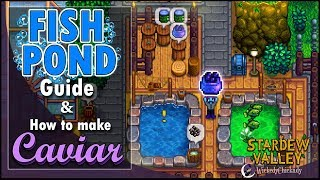 Fish Pond Guide How To Make Caviar Stardew Valley 1 4 Update New Gameplay New Features Youtube