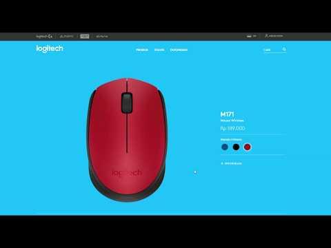 Logitech M170 dan M171 Wireless Mouse Review Pemakaian 4 Tahun