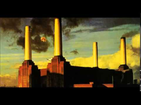Pigs (Three Different Ones) - Pink Floyd ( Animals) 1977
