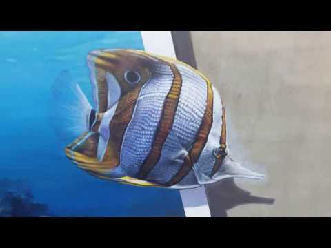 Ocean 3d wall travel youtube for H m fish count