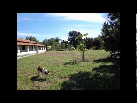 FAZENDA A VENDA NA REGIÃO DE 7 LAGOAS E ESMERALDAS-MG 100 HÁ, 47 KM DE BH-MG.