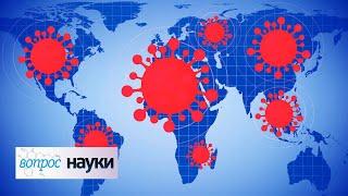 Демография пандемии   Вопрос науки с Алексеем Семихатовым