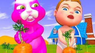 Bebé Boong Y El Conejo De La Cosecha De Zanahorias Dibujos Animados Para Los Niños