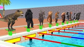 Wild Zoo Animals Swimming Pool Race Funny Videos For Kids