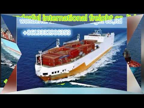 sea freight|sea shipping|ocean shipping|wonderful international freight co.,ltd