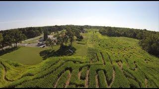 Corn Maze in Whitehouse Ohio, Wheeler Farms 2015