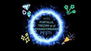 PEȘT    11.11 12.12.2019   Portalul Trezirii Conștiinței și Al Transformării