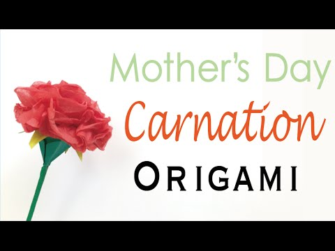 Carnation Flower Origami Paper Mothers Day Origami Kawaii066