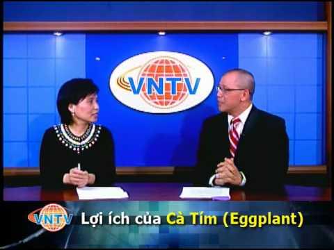 Lợi Ích Của Cà Tím (Eggplant) VNTV