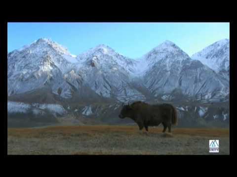 Visit the Wakhan Corridor
