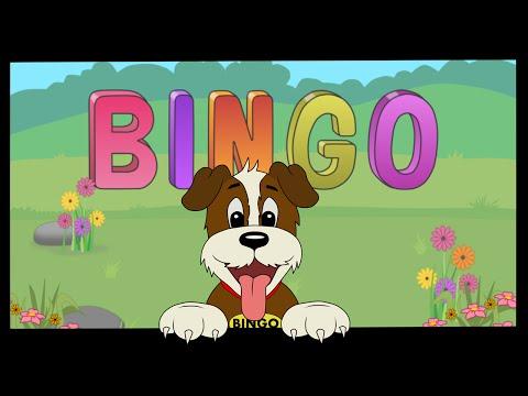 BINGO SONG | Funny Dog | Baby song | Sing Swing n Rhyme