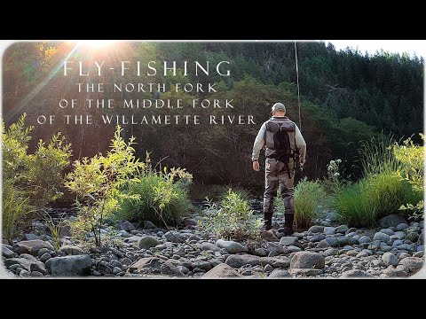 Fly-Fishing The North Fork Of The Middle Fork Of The Willamette River! LONGEST River Name In Oregon!