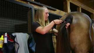 """""""Bathing! And a Trim!"""" How to Trim the Mane, Tail, Muzzle, Ears, & Bridle Path"""