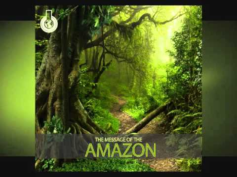 The Message of the Amazon | Relax Music | Instrumental Music | Meditation Music
