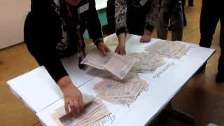 Выборы в Алексине. УИК 0105