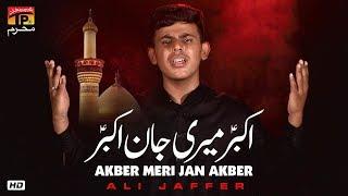 Akber Meri Jan Akber | Ali Jaffer | New Noha 2019 | TP Muharram