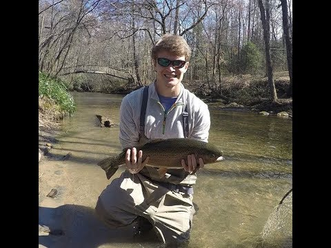 Fly Fishing Helen, Georgia 5lb+ Rainbow Trout