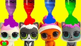 LOL Surprise Pets vs LOL Surprise Dolls Learn Colors