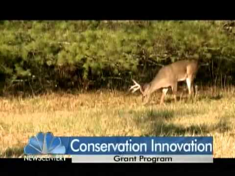 Applications Available for Conservation Innovation Grant Program