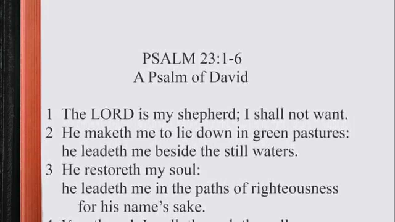 psalm 23 Some even see the imagery of a guide in verses 3 and 4 i am inclined to see two images in the psalm, that of the shepherd (vv 1-4) and that of the host (vv 5-6) 76 with this background in mind, let us begin our study of psalm 23 the sheep and the shepherd (23:1-4) 1 a psalm of david.