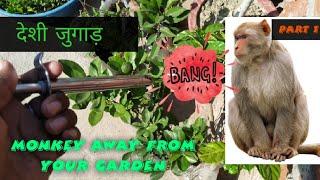# 9 How to secure your garden from monkey🐒🐒( अपने बागीचे को बंदरो से कैसे बचाये) part 1 🐒🐒
