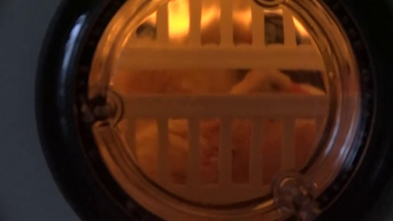 Kuluçka Makinası Civciv Çıkımı %100 Başarı Anlatımlı