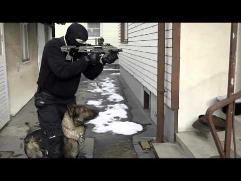 tactical-obedience-k9-movement---on-line-watchdog