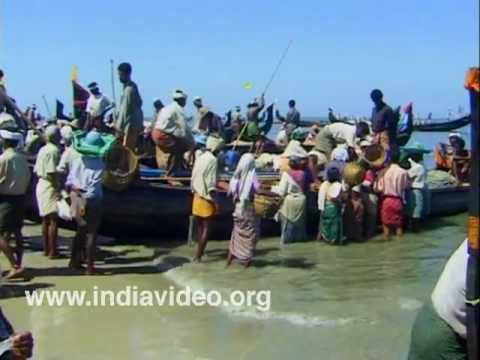 Chakara - Bountiful catch for the fishermen