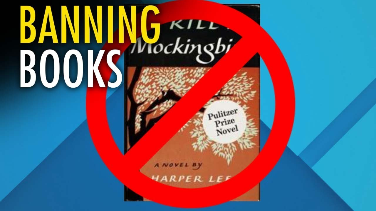 reasons why to kill a mockingbird was banned