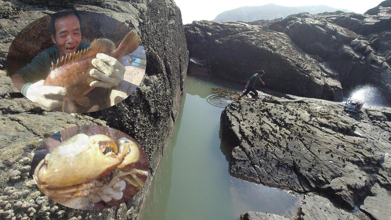 小囿连盘岛坑海鲜爆满,650一斤大货令人兴奋,极品大青难得一遇
