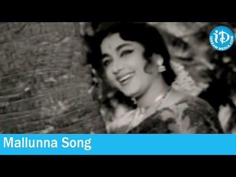 Thodu Needa Movie Songs - Mallunna Song - K V Mahadevan Songs