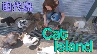 A Day on Japan's CAT ISLAND: TASHIROJIMA