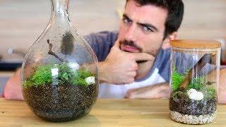 Et si on faisait un terrarium ? Jardin DIY fermé en bocal