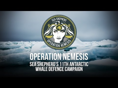 Operation Nemesis: Campaign Launch