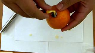 شرح خدعة into orange card trick