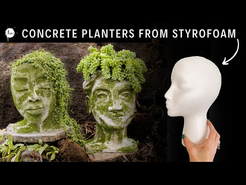 Cool & Easy Concrete Head Planter DIY Project