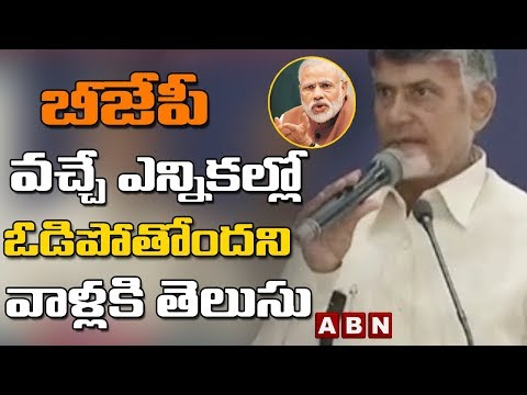 I'm fighting the Attitude of Central Government | Chandrababu Delhi Speech Highlights