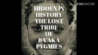 Hidden in History: The Lost Tribe of Ba'Aka Pygmies May Face Extinction