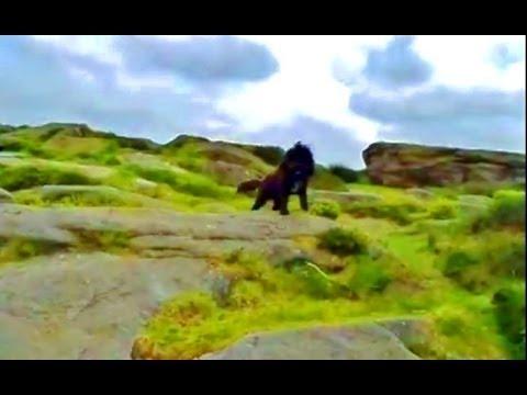 ''Baildon Green Rocks & Underground Caves... Part Two''. 'SPIRITUAL WARFARE & MIND CONTROL'