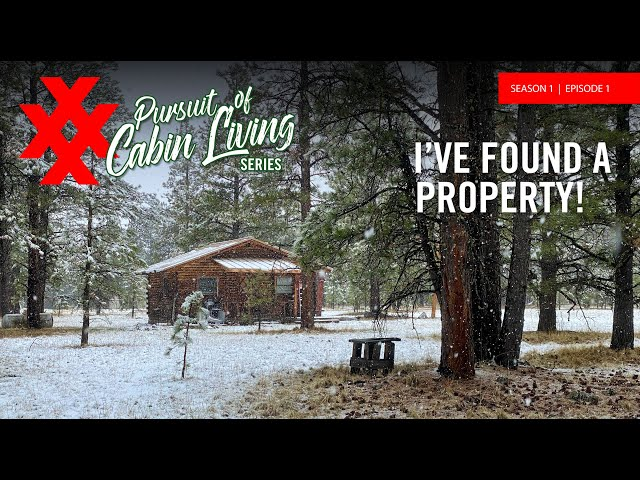 Cabin Living in New Mexico's Enchanted Circle