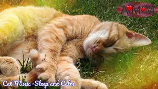 Music for CATS. Calm, relax and let your cat sleep. screenshot 4