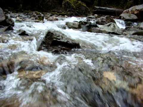 Babbling Brook Hiway 2 Washington State