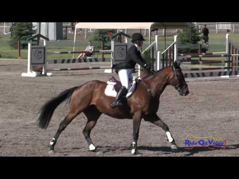 150S Barbara Flynn on P K  Cooper Open Preliminary Show Jumping Rebecca Farm July 2016