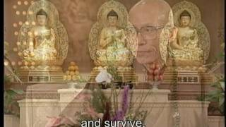 What is the meaning of sentient beings in Buddhist term?(GDD-1081)DVD
