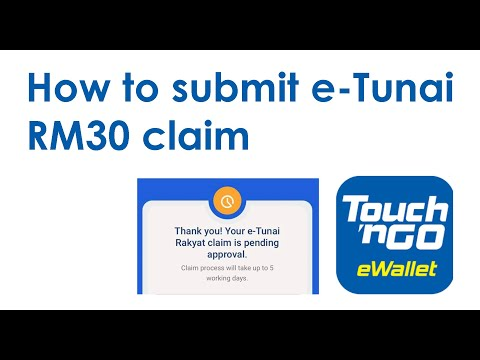 Claim Etunai With Touch N Go Ewallet Despite Error Message Youtube