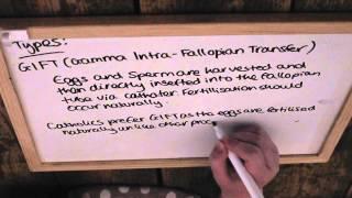 GCSE RE revision- Fertility treatment/cloning