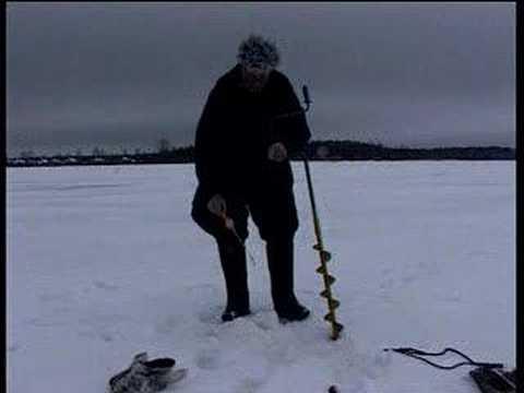 Окунь, первый лед