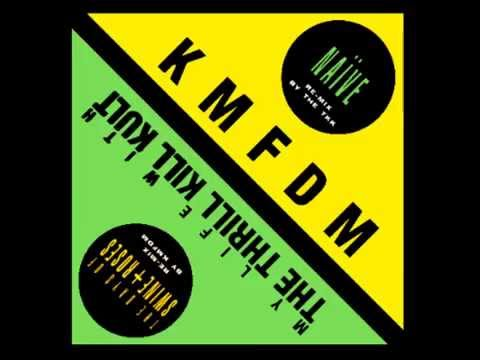 My Life with the Thrill Kill Kult - The Days of Swine and Roses (KMFDM Remix)