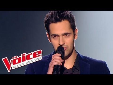 The Voice 2013 | Yoann Fréget - Vole (Céline Dion) |  Prime 3