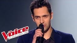 Céline Dion – Vole | Yoann Fréget | The Voice France 2013 | Prime 3